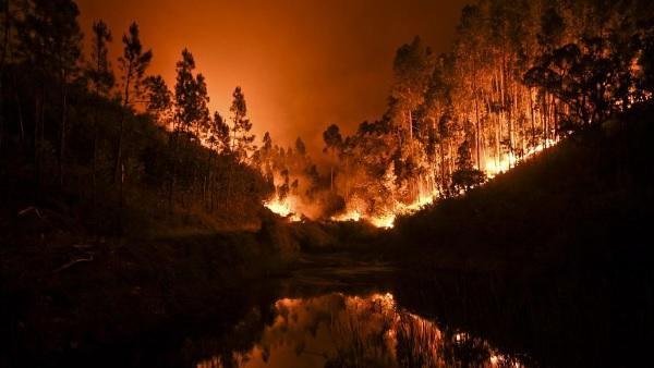 Portugal declara Estado de Catástrofe por Incendios